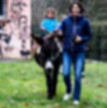 Balades à dos d'ânes - copy. Renaud Fourcade - PyRAWnéens