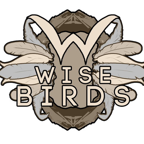 Wisebirds Logo