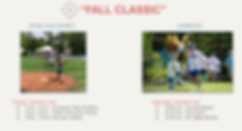 Wiffle_At_The_Hollow_Sponsorship_Package