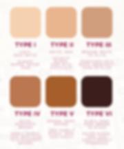 skin types.PNG