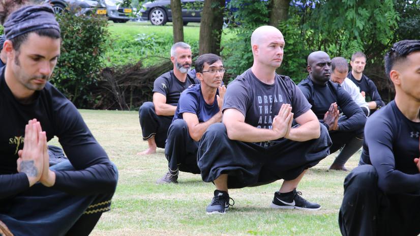 Satria Yoga