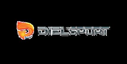 Diel Sport.png
