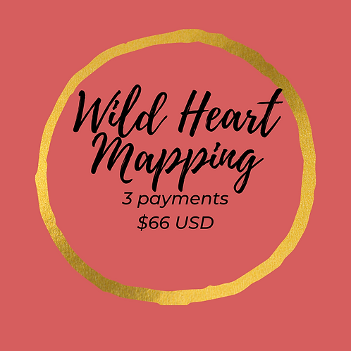 Wild Heart Mapping payment plan
