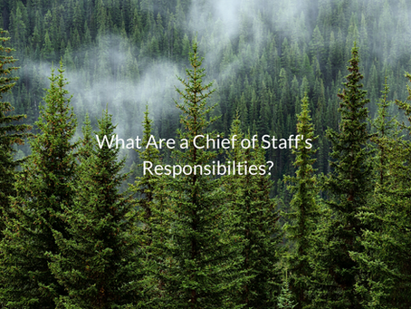 What Are a Chief of Staff's Responsibilities?