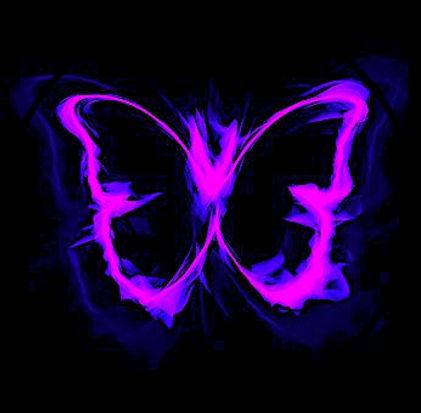 butterfly-1613341__340.jpg