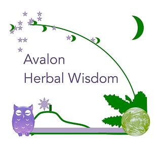 Logo Wisdom.png