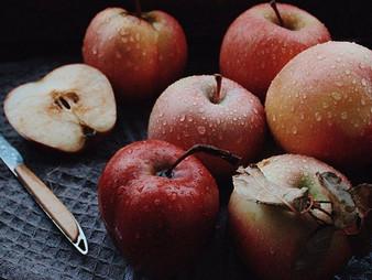 Trucs pour faire pousser plus de fruits dans vos arbres cet été