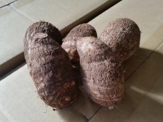 里芋 (静岡県)