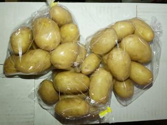メークイン 新馬鈴薯(静岡県)