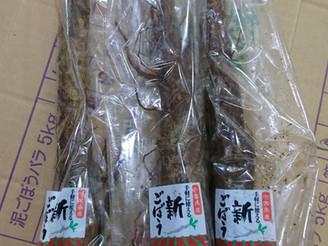 サラダ牛蒡(千葉県)