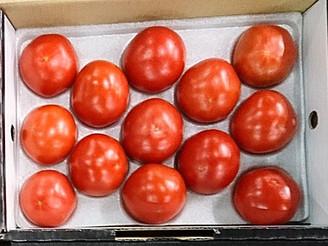 高糖度トマト(熊本県)