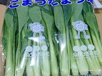 小松菜 (静岡県浜松産)