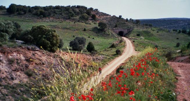 paisaje via verde.jpg