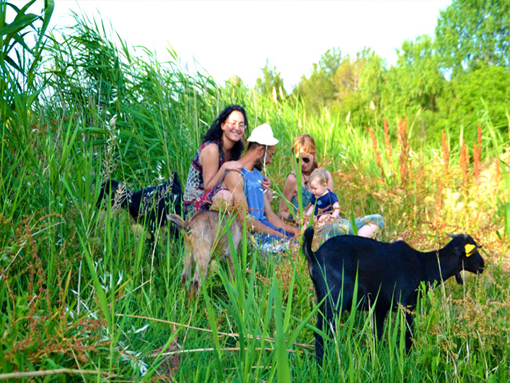 casa rural con animales color.jpg