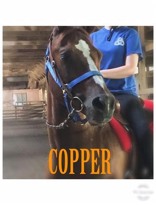 Copper headshot.jpg