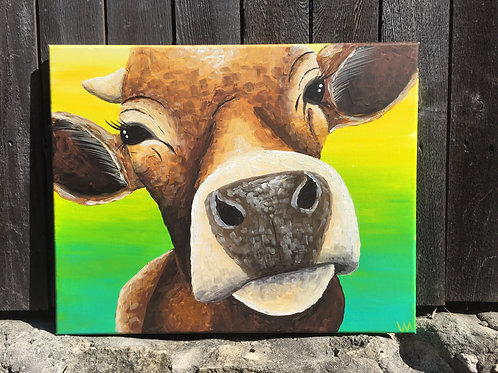 """""""Nosy Heifer"""""""