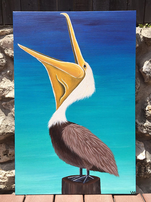 """Laughing Pelican"""