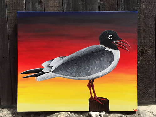"""""""Seagull at Sunset"""""""