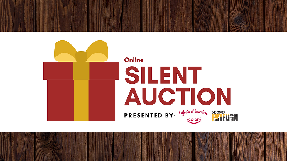 Silent Auction Intro.png