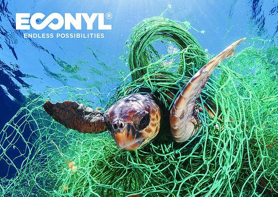 ECONYL®_turtle_A6.jpg