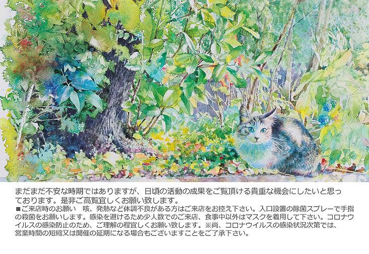 hoshino_kyoushitsuten_2021aug_dm1.jpg