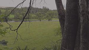 River crossing and trees - 1 dark.jpg