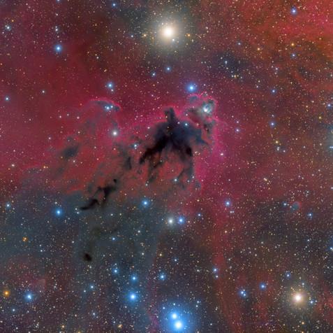 LDN1622 La Nebulosa del Coco