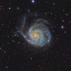 M 101 La Galaxia del Molinete