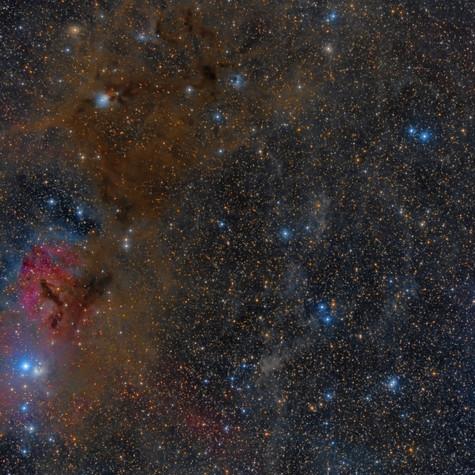 Región NGC 1333 e IC 348
