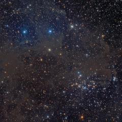 NGC 1342 Cúmulo con Nebulosidad