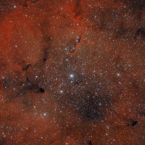 IC 1396 Nebulosa De La Trompa de Elefante