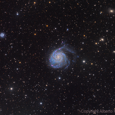 M101 and Surroundings