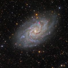 M33 La Galaxia del Triángulo