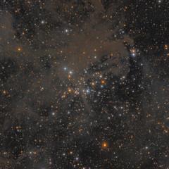 NGC 1342 Cúmulo Polvoriento en Perseo