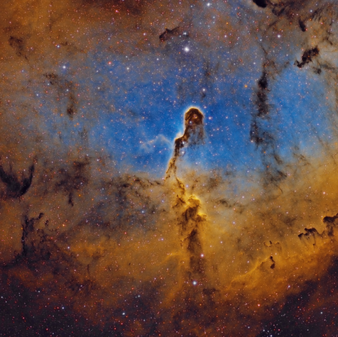 IC 1396 Nebulosa Trompa de Elefante