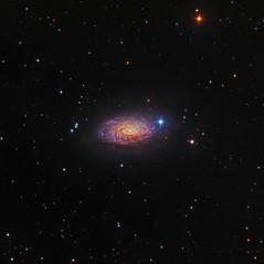 M63 La Galaxia del Girasol 2015