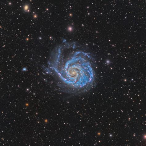 M 101 La Galaxia del Molinete 2018