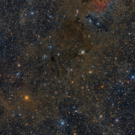 NGC 1333 y Alrededores