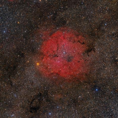Gran Campo Región IC 1396
