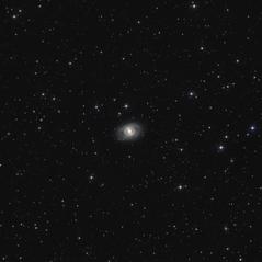 M95 y Algunas Galaxias más en Leo
