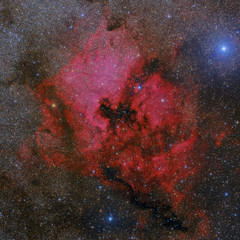NGC 7000 & IC 5070 (Finalist in the Insight Contest 2018)