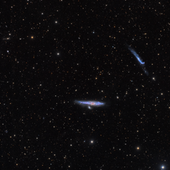 NGC4631 and NGC4656 in Canes Venatici