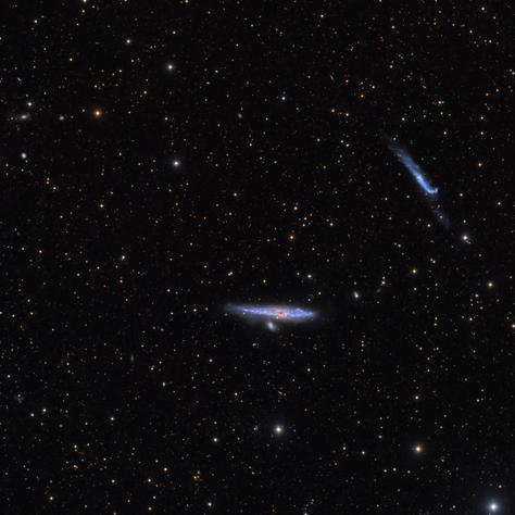 NGC4631 y NGC4656 En Canes Venatici