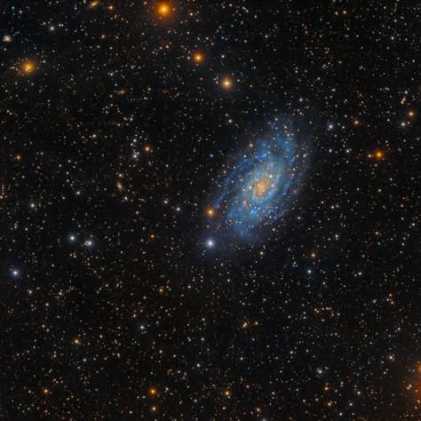 NGC 2403 La hermana pequeña de M33