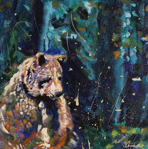 Bear and Fireflies