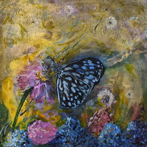 Original - con·trast   Butterfly