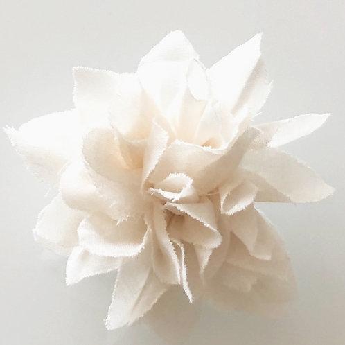 CARLA blanche