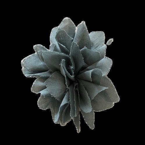 CARLA gris