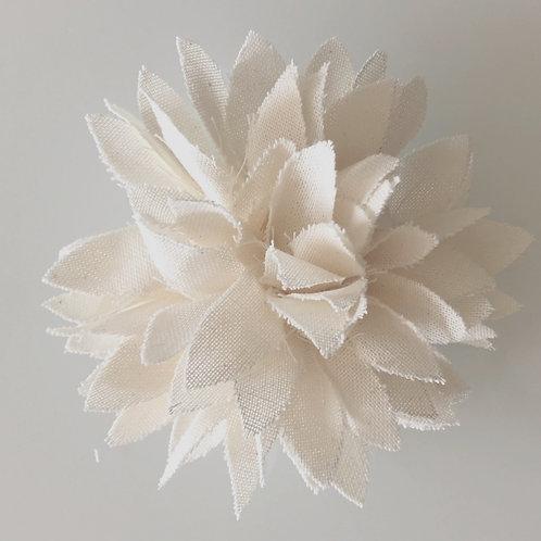 PALOMA blanche