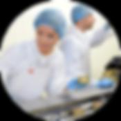 Proces produkcyjny posiłków PROporcja